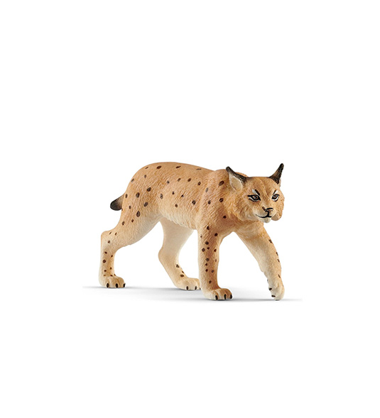 WILD – LINCE