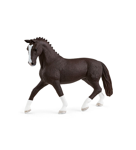 HORSE – GIUMENTA HANNOVER NERA