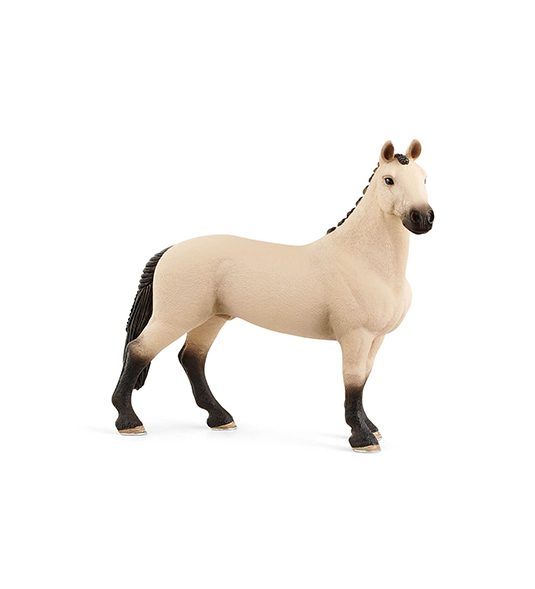 HORSE – CASTRONE HANNOVER RED DUN