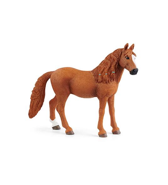 HORSE – GIUMENTA DI GERMAN RIDING PONY