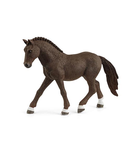 HORSE – CASTRONE DI GERMAN RIDING PONY